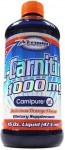 Lipo-6 Carnitine