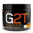 G2T - Go 2 Train - Starlabs