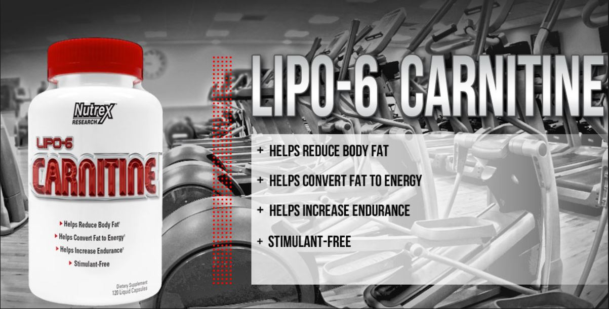 Lipo-6 Carnitine - Preço