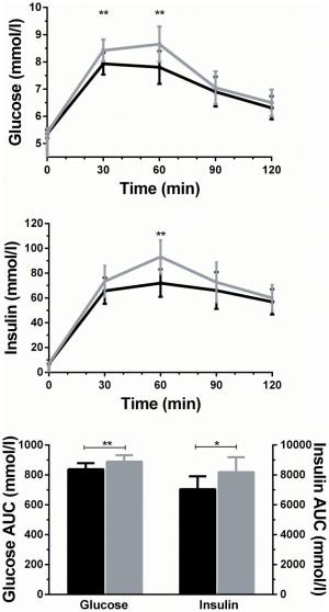 Extrato de folha de oliveira e seus Benefícios na glicose no sangue e insulina