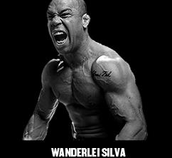 Smartshake - Wanderlei Silva